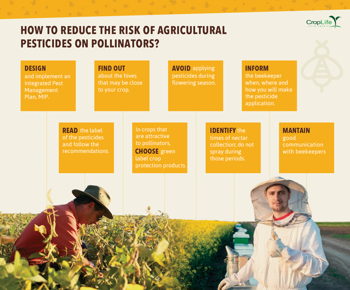 Farmers and beekeepers: a perfect marriage? - CropLife Latin