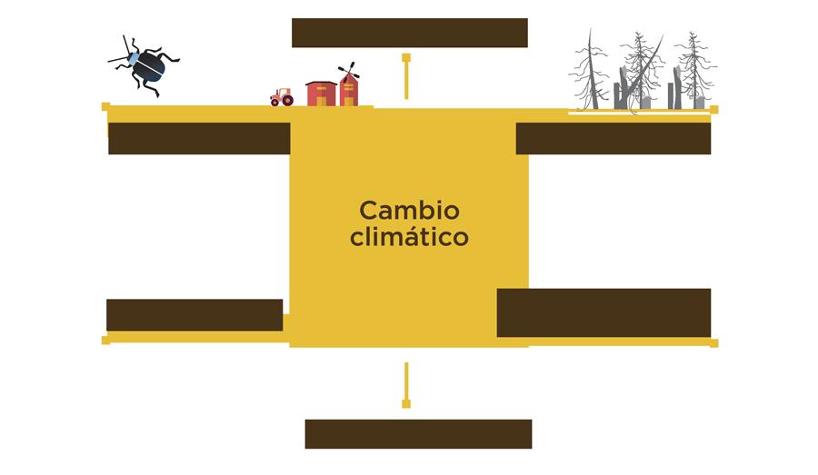 Efectos-Cambio-Climatico-en-Agricultura