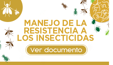 Insecticidas_documento